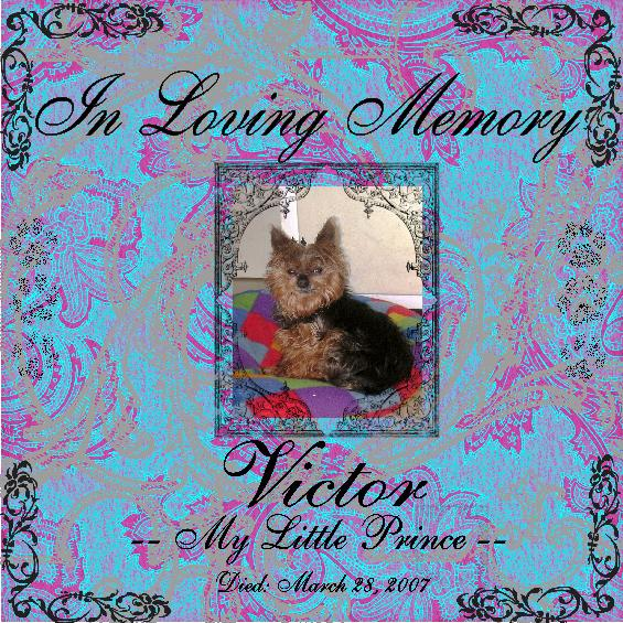 Victor Tribute Page